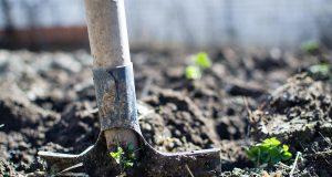 Vápnenie pôdy na jar: Na čo si treba dať pozor?