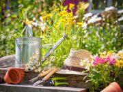 Letné projekty pre skrášlenie záhrady!