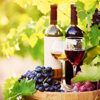 Mladé víno: Kedy ho možno uviesť na trh?